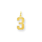 14k Small Satin Number 3 Charm