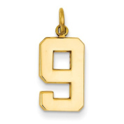 14k Yellow Gold Casted Medium Polished Number 9 Charm Pendant. Metal Wt- 1.17g