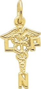 Rembrandt Charms Licenced Practical Nurse Charm, 10K Yellow Gold