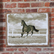 Run with the Clouds Horse Canvas Wall Art