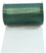 Kel-Toy 2-Tone Sheer Ribbon with Cut-Edge, 15cm by 10-Yard, Ice Blue/Green