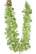 Renaissance 2000 Ribbon, 13cm , Apple Green