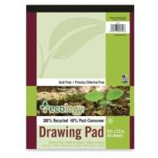40 Sheet Ecology Drawing Pad