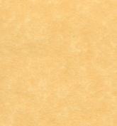 Antique Gold Parchment Paper 24lb, Size 22cm X 36cm , 50 Sheets Per Pack