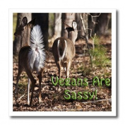 Lee Hiller Photography Vegan Slogans - Vegan Slogans Vegans Are Sassy Whitetail Deer - Iron on Heat Transfers