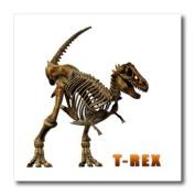 Boehm Graphics Dinosaur - T Rex Dinosaur - Iron on Heat Transfers