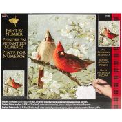 Plaid Paint By Number Kit (41cm by 50cm ), 21737Cardinals & Cherry Blossoms