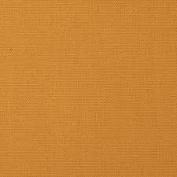 5' Yard Bolt Gold 300ml Canvas