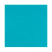 5' Yard Bolt Turquoise 300ml Canvas