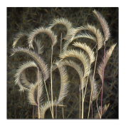 Trademark Art Prairie Grass by AIANA Canvas Wall Art