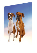 2 Boxers Dog Canvas