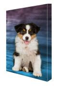 Australian Shepherd Canvas 16 x 20