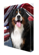 Bernese Mountain Dog Canvas 16 x 20 Patriotic