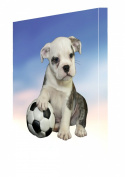 Bulldog Puppy Dog Canvas