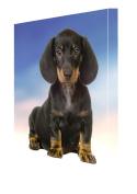 Dachshund Dog Canvas