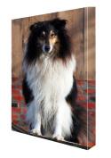 Rough Collie Dog Canvas