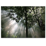 New Ikea Premiar Crescendo of Light Picture with Frame/canvas Large 140cm X 200cm