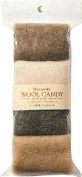 Hamanaka Wool Candy Material Set / Sheet Wool Blanket Fell 441-123-1
