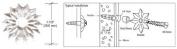 CRL 2.5cm - 0.3cm Clear Plastic Star Rosettes - Package