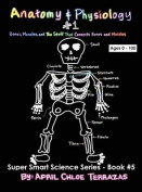 Anatomy & Physiology Part 1  : Bones, Muscles, and the Stuff That Connects Bones and Muscles