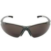 Radians Reading Bifocal Smoke C2 Safety Glasses +2.5
