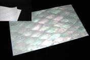 Donkey Ear Shell Coated Adhesive Veneer Sheet