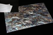 Dragon Paua Shell Coated Adhesive Veneer Sheet