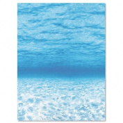 Fadeless BBS Bulletin Board Sets Paper Roll - 120cm x 50 Ft; Under The Sea; no. PAC56525