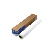 EPSON DOUBLEWEIGHT PAPER, 1-ROLL 110cm X 82' MATTE S041387 by EPSON