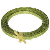 Ribbon Lime Green Plastic Glitter Craft Ribbon 1.3cm x 23 Feet