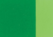 Holbein Artists Oil 40ml Cadmium Green
