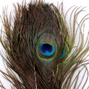 """Ostart 50pcs Real Natural Peacock Feathers 25-30cm 10-12"""" for Craft Wedding Lots"""