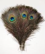 100 Pcs Peacock Feathers 25cm - 30cm