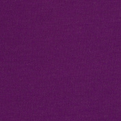 Stretch Rayon Blend Jersey Knit Bright Purple Fabric