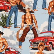 light blue Pin up Cowboy fabric by Alexander Henry Wranglers