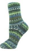 Premier Wool Free Sock Yarn-Saguaro Sky