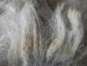 Grey Alpaca Handspinning Felting Fibre Fleece Wool