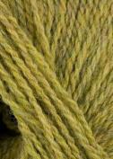 Reynolds - Whiskey Knitting Yarn - Light Olive
