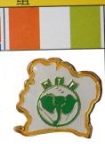 Ireland FIFA World Cup Metal Lapel Pin Badge New
