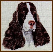 Pegasus Originals English Springer Liver/White Counted Cross Stitch Chart Pack