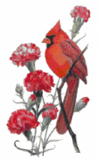 Ohio State Bird and Flower Northern Cardinal and Scarlet Carnation Counted Cross Stitch Pattern