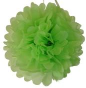Tissue Pom Pom Paper Flower Ball 25cm Key Lime -Just Artefacts Brand