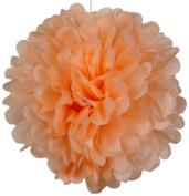 Tissue Pom Pom Paper Flower Ball 41cm Peach -Just Artefacts Brand