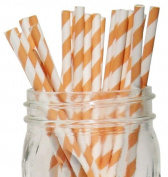 Striped Paper Straws 25pcs Peach -Just Artefacts Brand