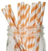 Striped Paper Straws 25pcs Peach -Just Artefacts Brand