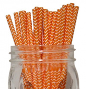 Chevron Stripe Paper Straw 25pcs Orange