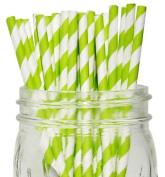 Striped Paper Straws 25pcs Kiwi Green -Just Artefacts Brand