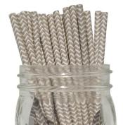 Chevron Stripe Paper Straw 25pcs Grey