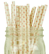Mini Polka Dot Paper Straw 25pcs White with Light Pink Dots -Just Artefacts Brand