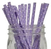 Mini Polka Dot Paper Straw 25pcs Lavender -Just Artefacts Brand